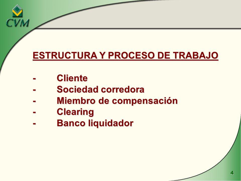 ESTRUCTURA Y PROCESO DE TRABAJO - Cliente - Sociedad corredora