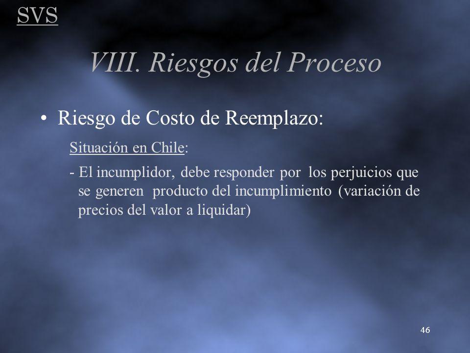 VIII. Riesgos del Proceso
