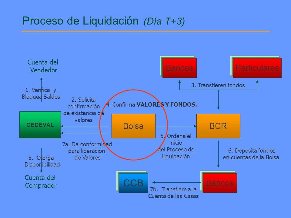 Proceso de Liquidación (Día T+3)