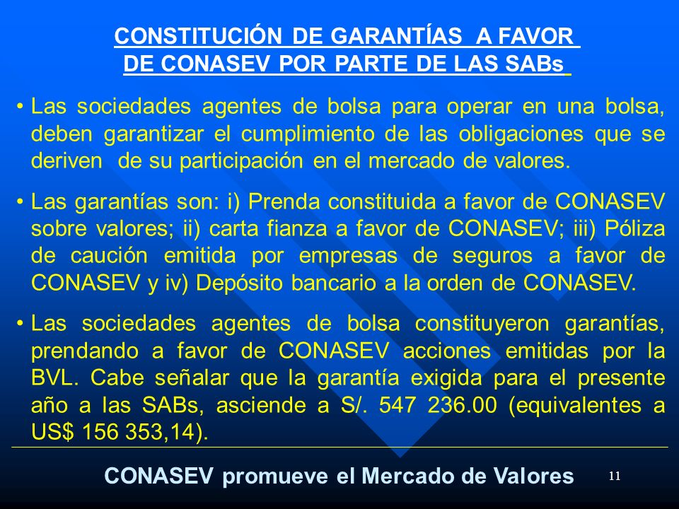 CONSTITUCIÓN DE GARANTÍAS A FAVOR DE CONASEV POR PARTE DE LAS SABs