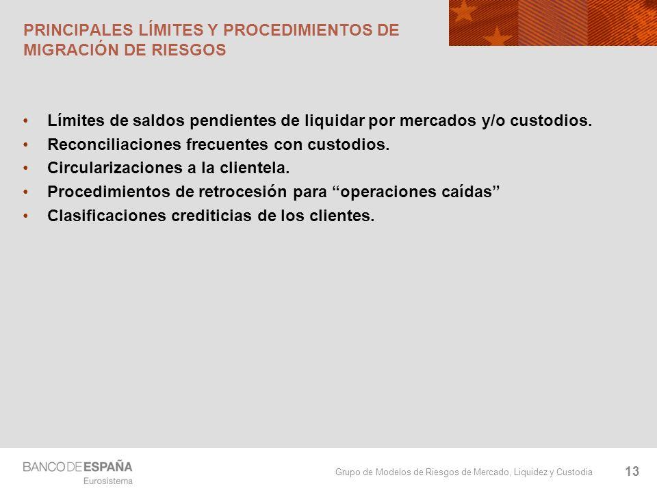 PRINCIPALES LÍMITES Y PROCEDIMIENTOS DE MIGRACIÓN DE RIESGOS