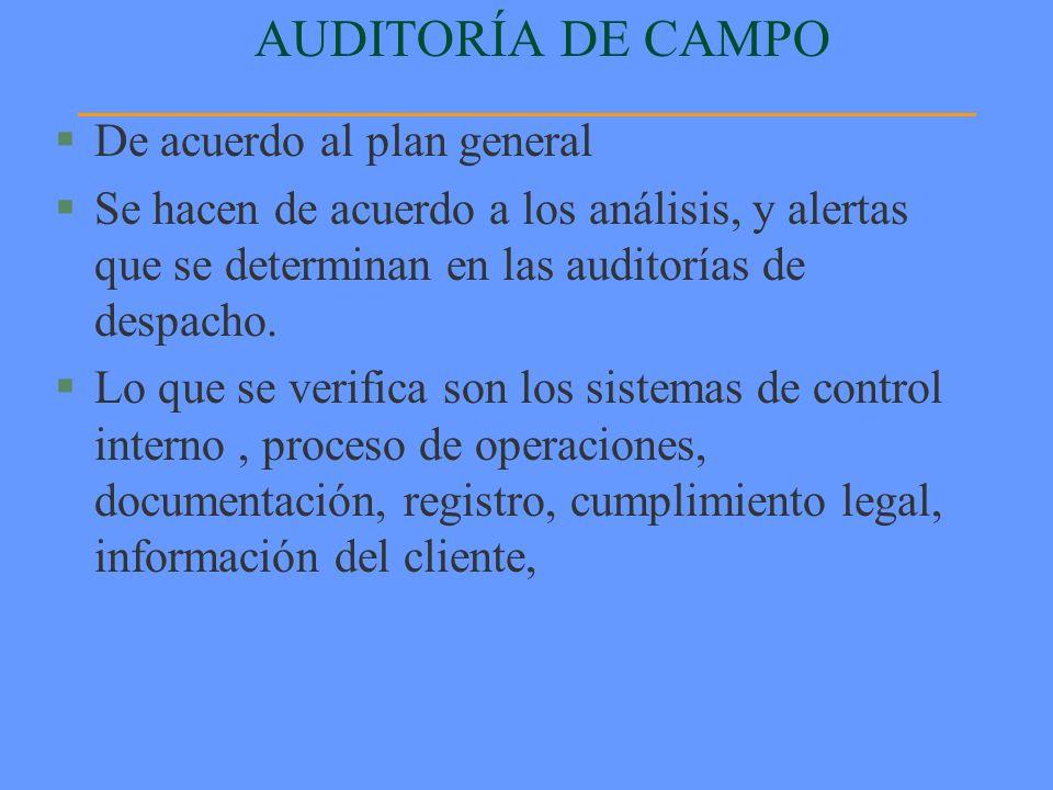 AUDITORÍA DE CAMPO De acuerdo al plan general