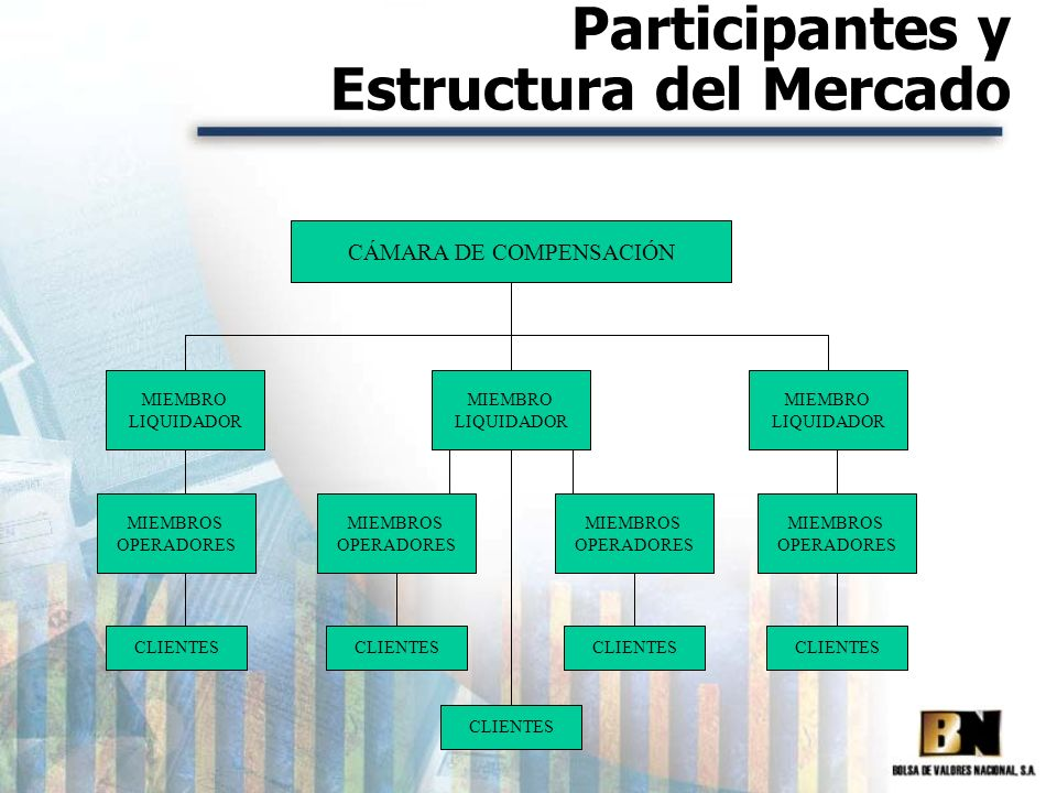 Participantes y Estructura del Mercado