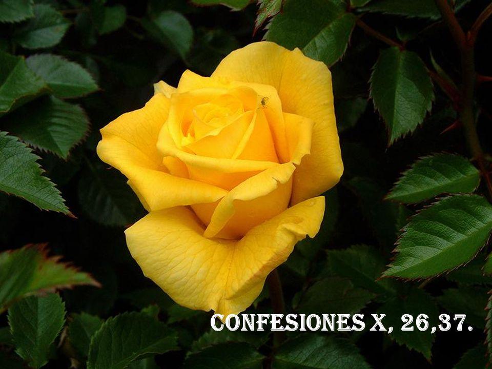 CONFESIONES X, 26,37.