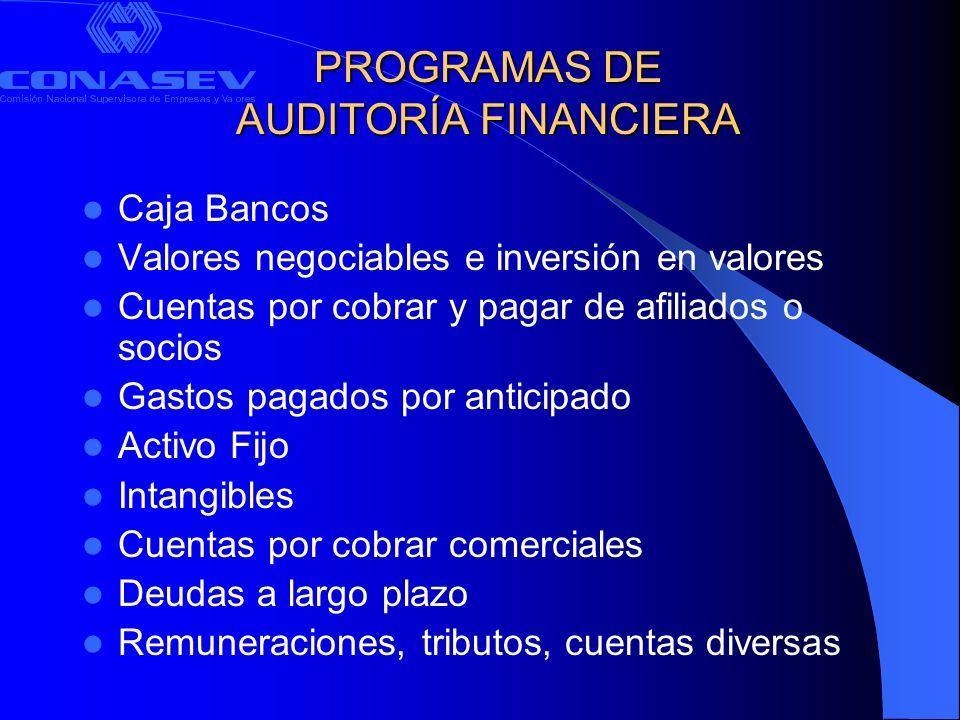 PROGRAMAS DE AUDITORÍA FINANCIERA