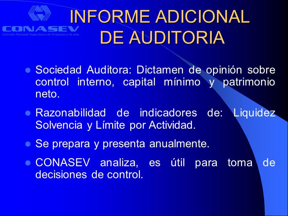 INFORME ADICIONAL DE AUDITORIA