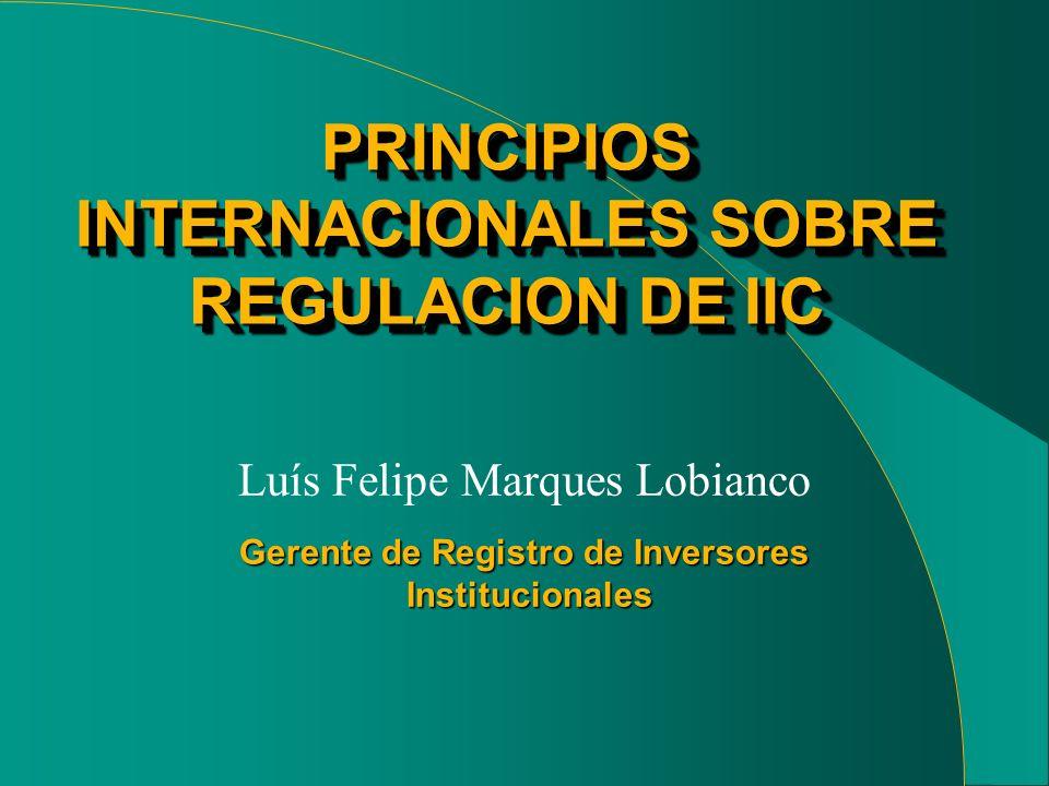 Gerente de Registro de Inversores Institucionales