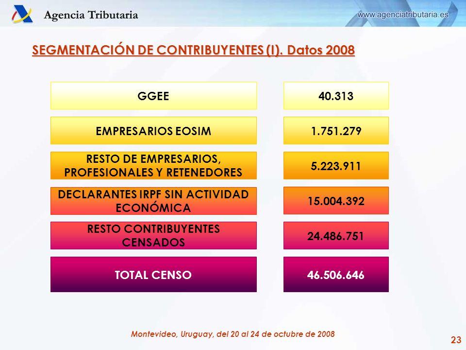 SEGMENTACIÓN DE CONTRIBUYENTES (I). Datos 2008