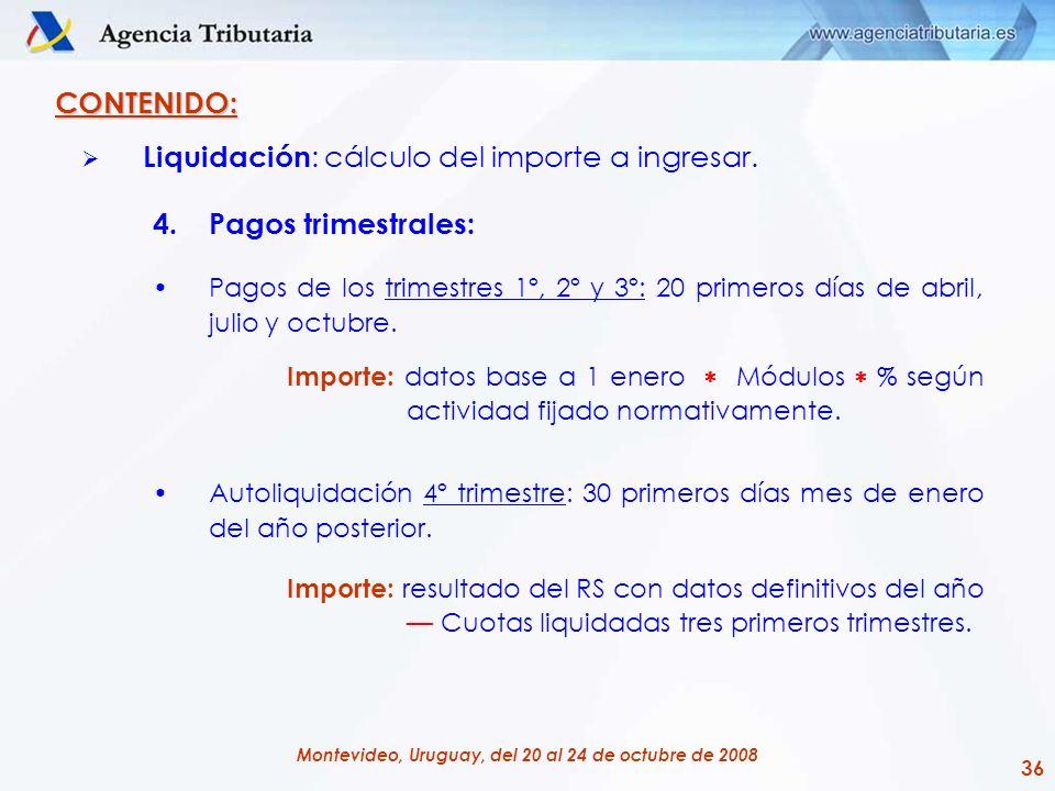 Liquidación: cálculo del importe a ingresar. Pagos trimestrales:
