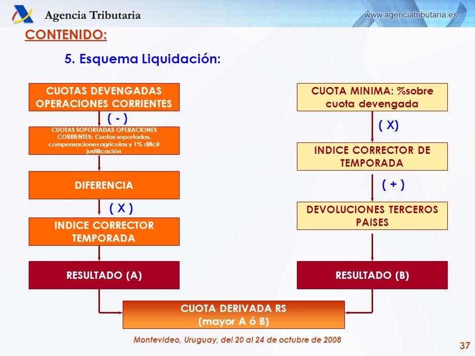 CONTENIDO: 5. Esquema Liquidación: ( - ) ( X) ( + ) ( X )