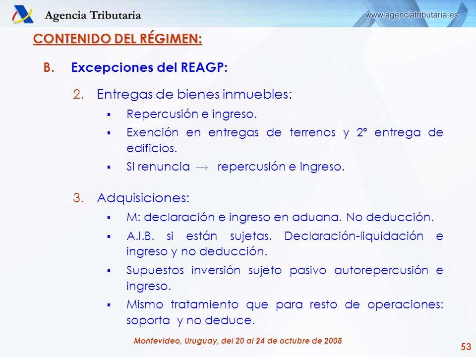 CONTENIDO DEL RÉGIMEN: Excepciones del REAGP:
