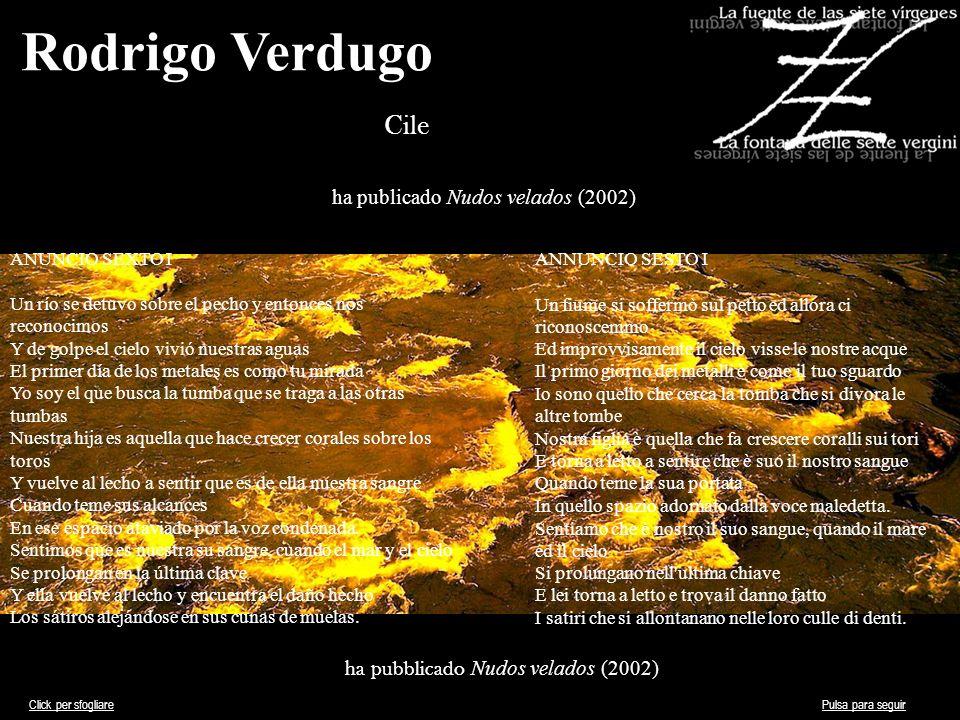 Rodrigo Verdugo Cile ha publicado Nudos velados (2002)