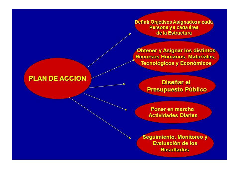 PLAN DE ACCION Diseñar el Presupuesto Público