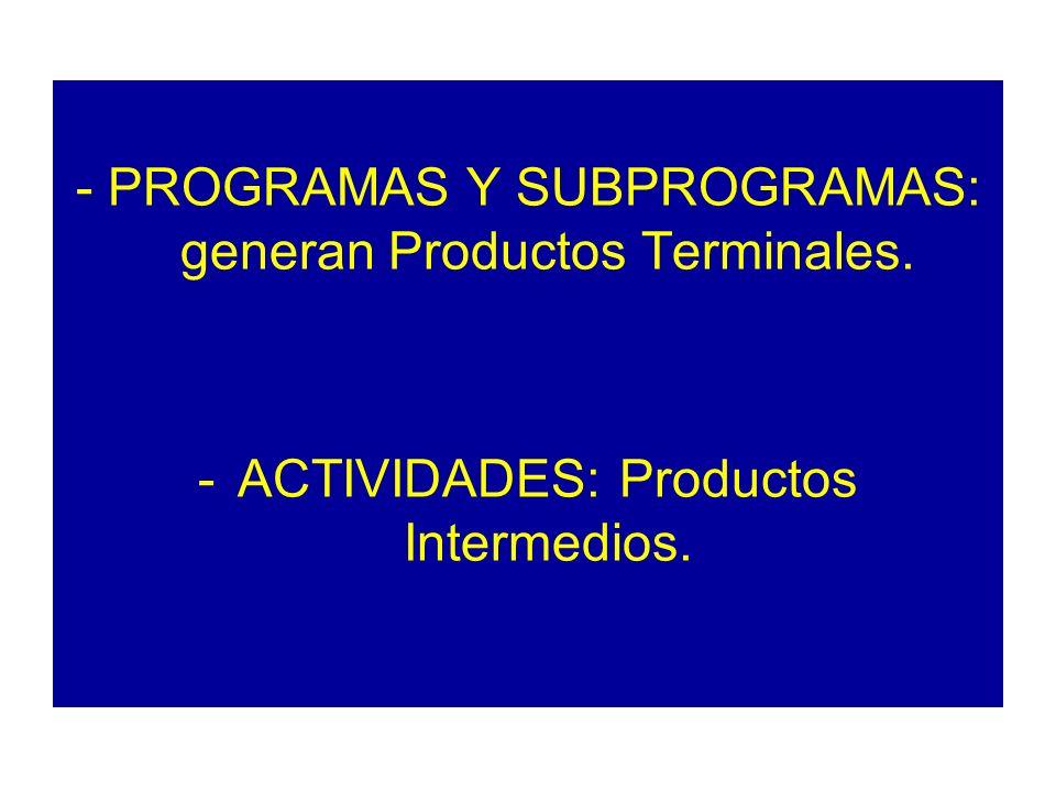 - PROGRAMAS Y SUBPROGRAMAS: generan Productos Terminales.