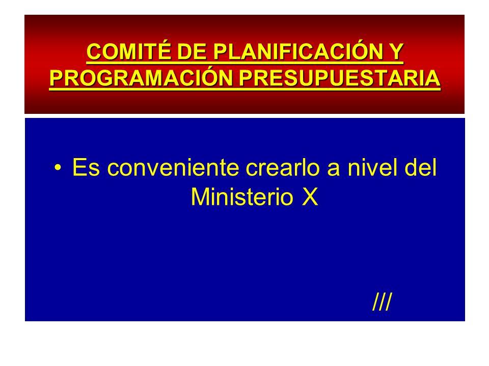 COMITÉ DE PLANIFICACIÓN Y PROGRAMACIÓN PRESUPUESTARIA