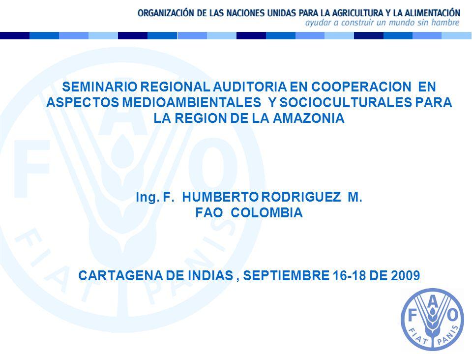 SEMINARIO REGIONAL AUDITORIA EN COOPERACION EN ASPECTOS MEDIOAMBIENTALES Y SOCIOCULTURALES PARA LA REGION DE LA AMAZONIA Ing.