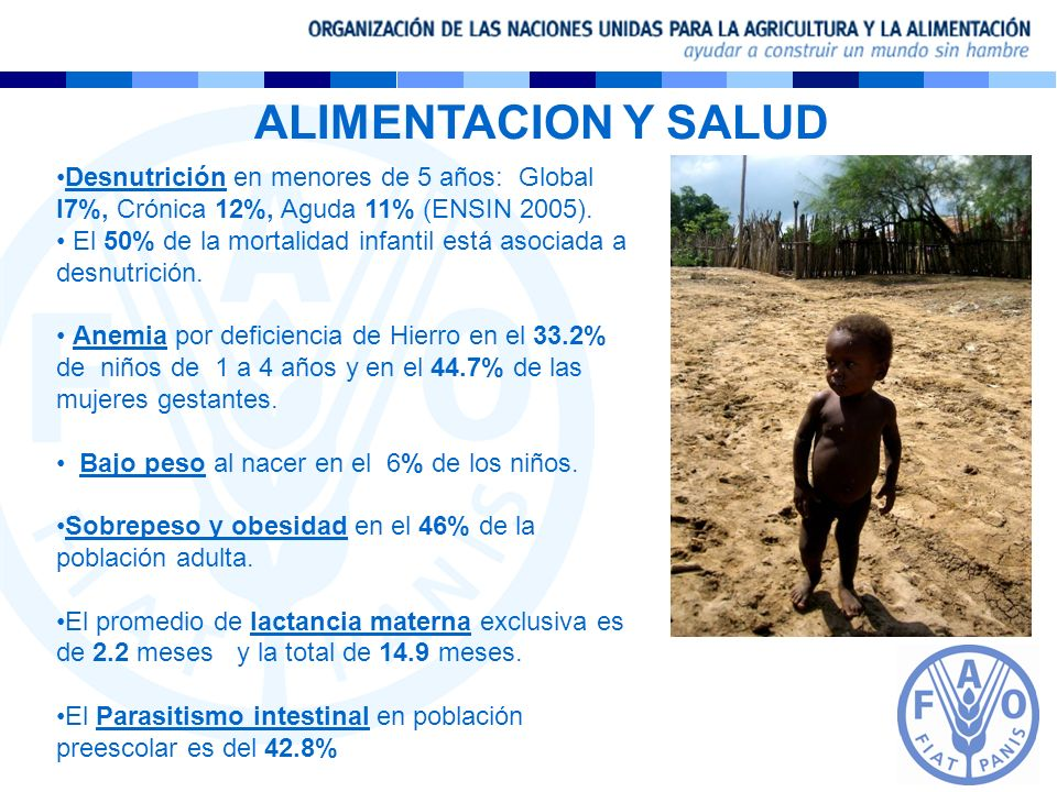 ALIMENTACION Y SALUDDesnutrición en menores de 5 años: Global l7%, Crónica 12%, Aguda 11% (ENSIN 2005).
