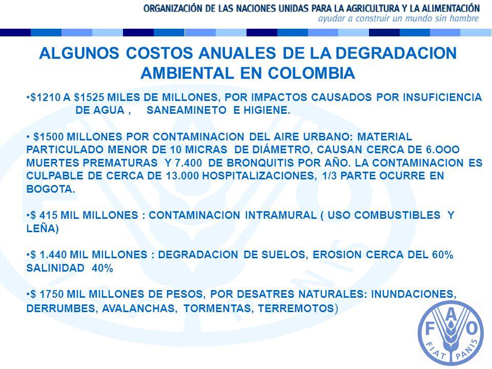ALGUNOS COSTOS ANUALES DE LA DEGRADACION AMBIENTAL EN COLOMBIA