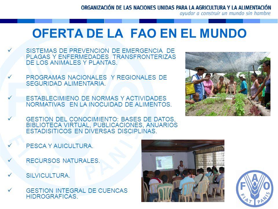 OFERTA DE LA FAO EN EL MUNDO