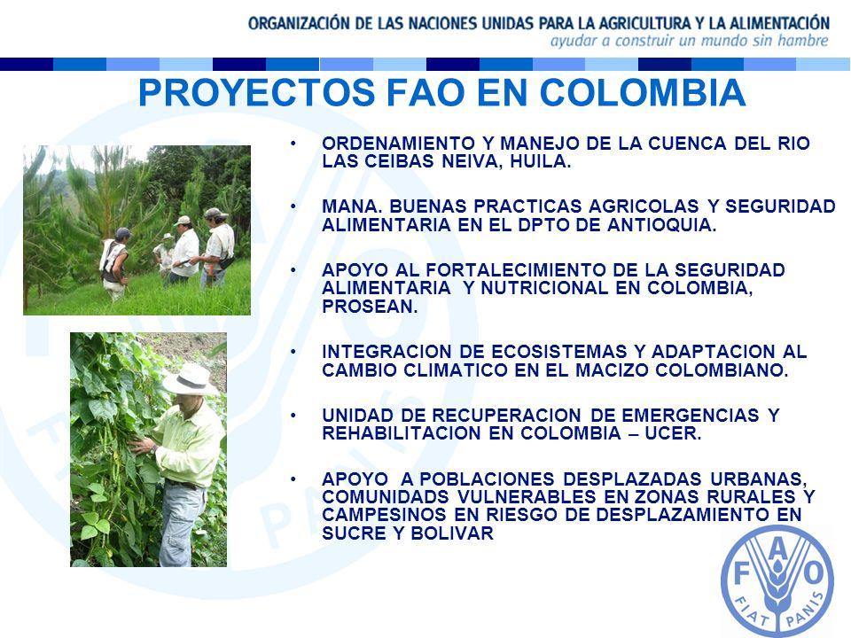 PROYECTOS FAO EN COLOMBIA