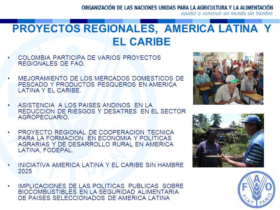 PROYECTOS REGIONALES, AMERICA LATINA Y EL CARIBE