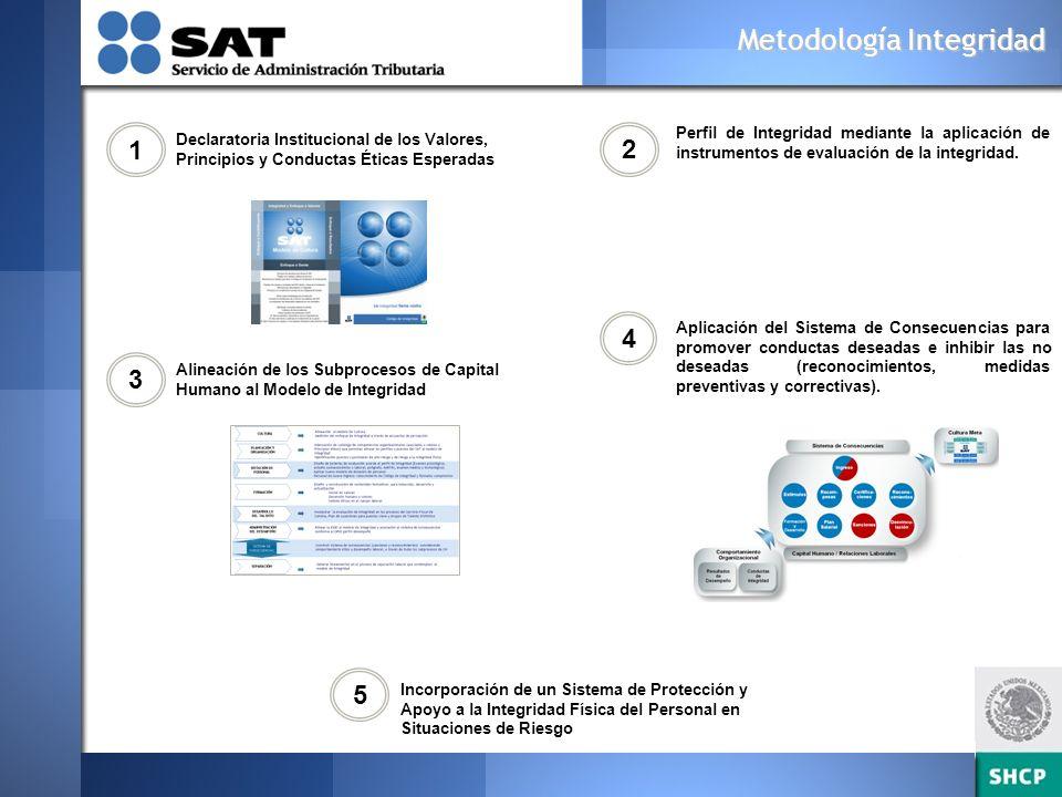 Metodología Integridad