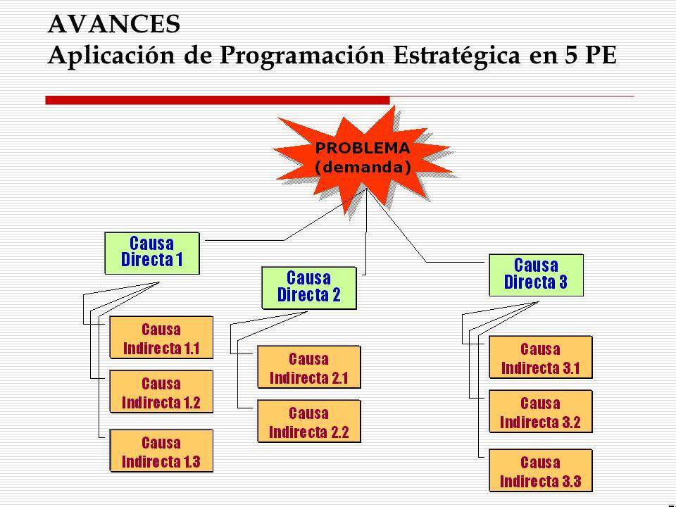 AVANCES Aplicación de Programación Estratégica en 5 PE