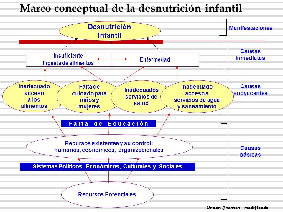 Marco conceptual de la desnutrición infantil
