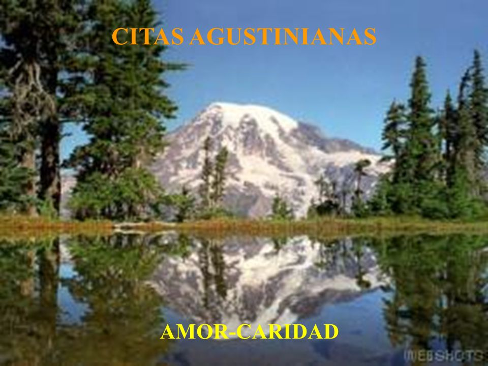 CITAS AGUSTINIANAS AMOR-CARIDAD