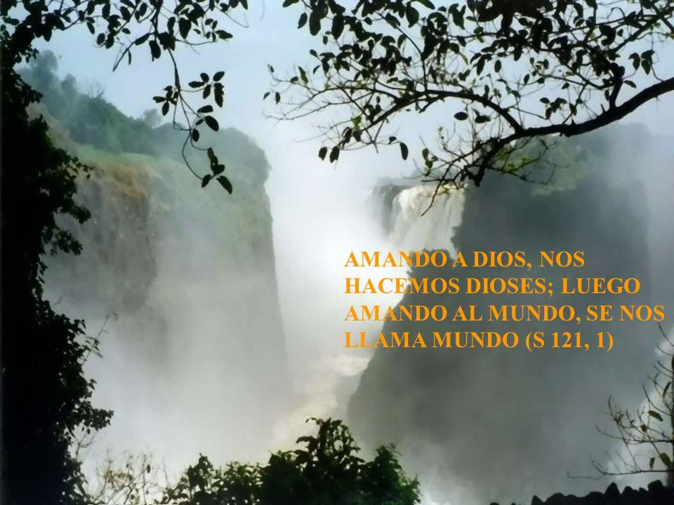 AMANDO A DIOS, NOS HACEMOS DIOSES; LUEGO AMANDO AL MUNDO, SE NOS LLAMA MUNDO (S 121, 1)