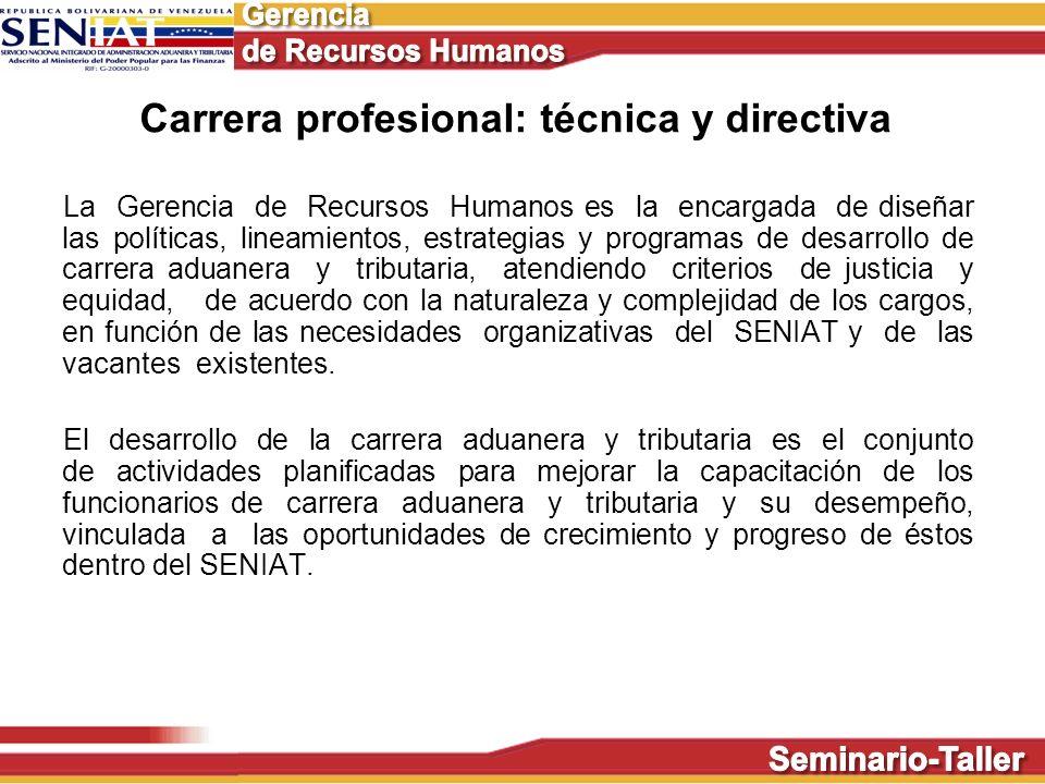 Carrera profesional: técnica y directiva