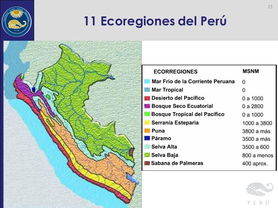 11 Ecoregiones del Perú