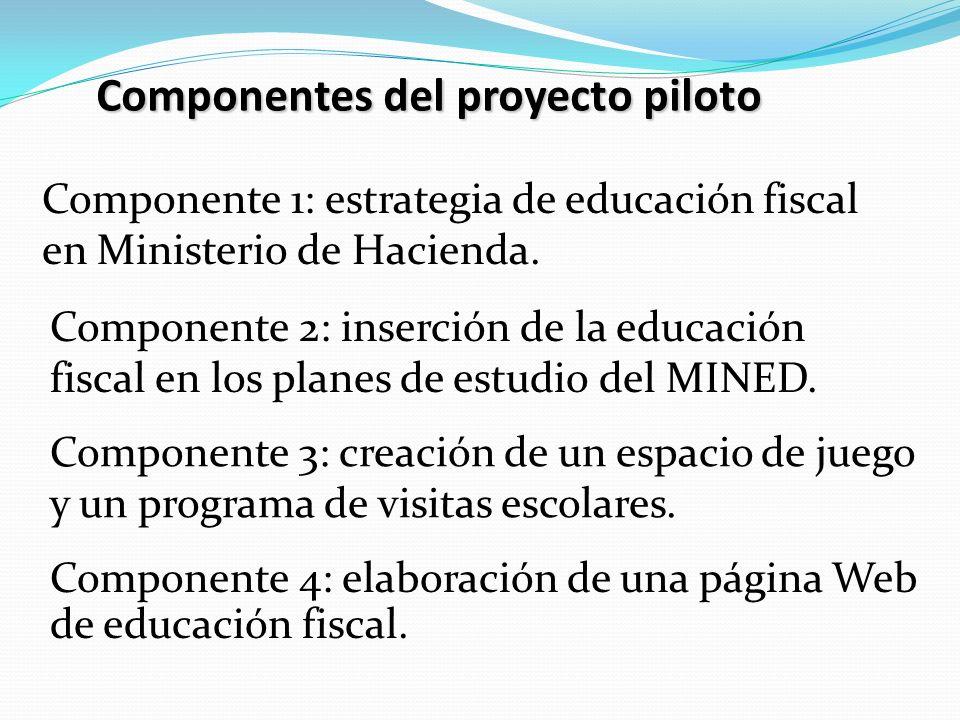 Componentes del proyecto piloto