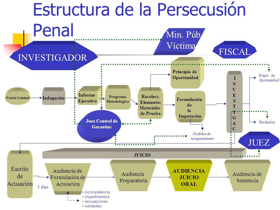 Estructura de la Persecusión Penal