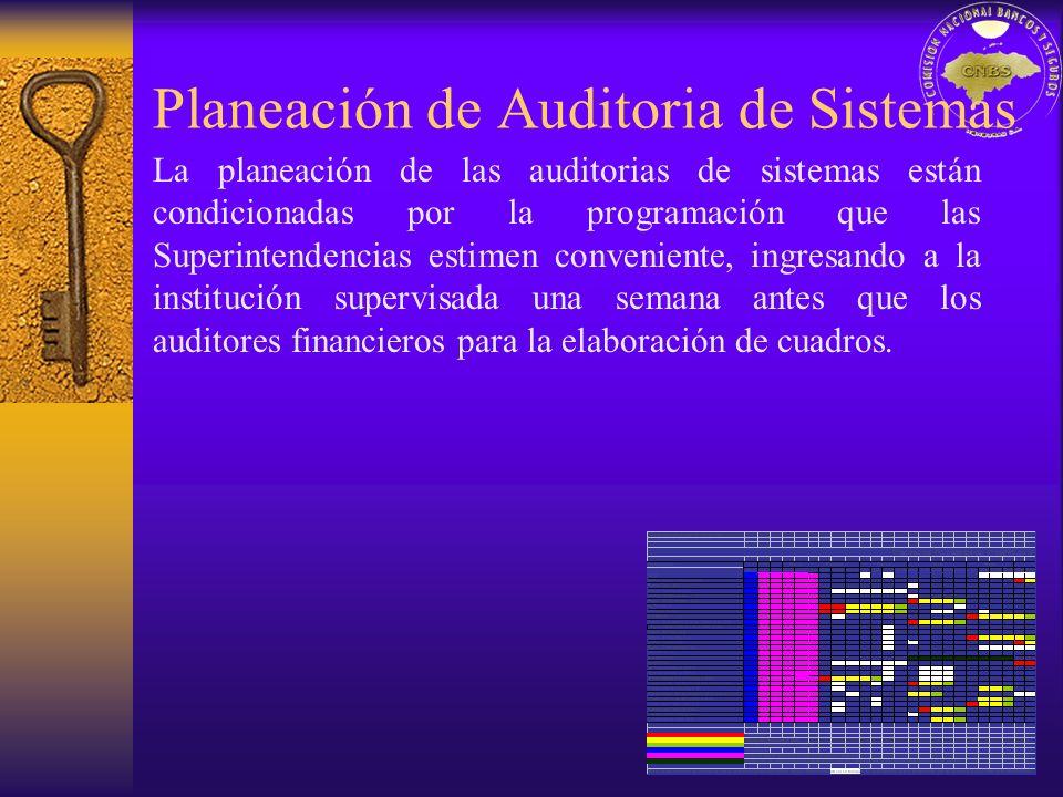 Planeación de Auditoria de Sistemas