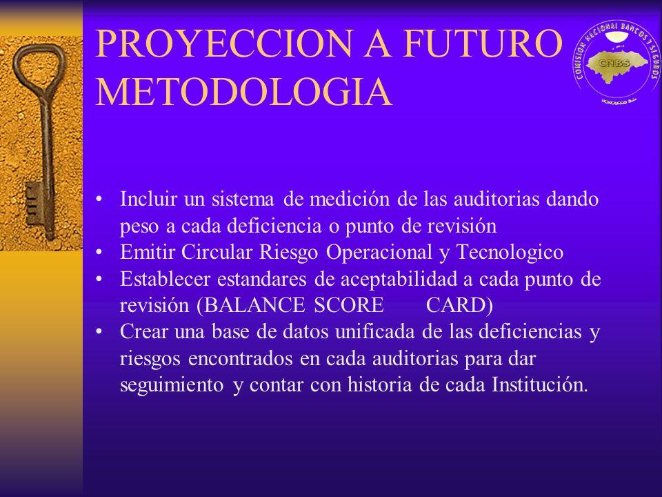 PROYECCION A FUTURO METODOLOGIA