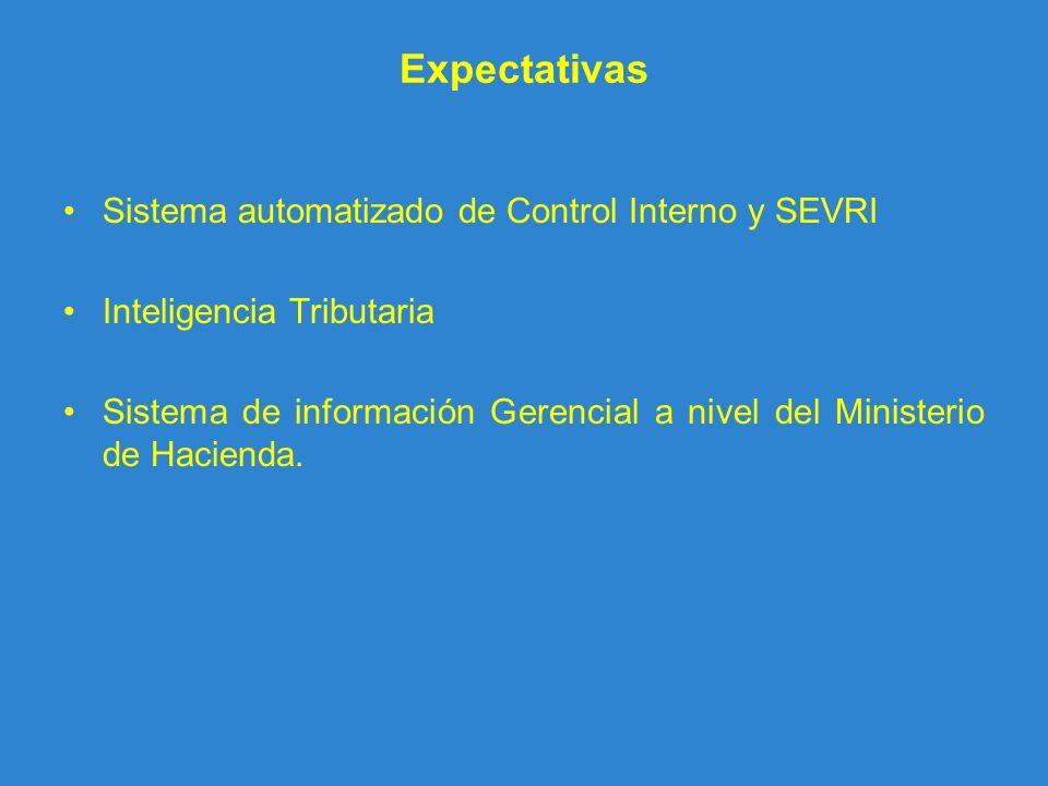 Expectativas Sistema automatizado de Control Interno y SEVRI