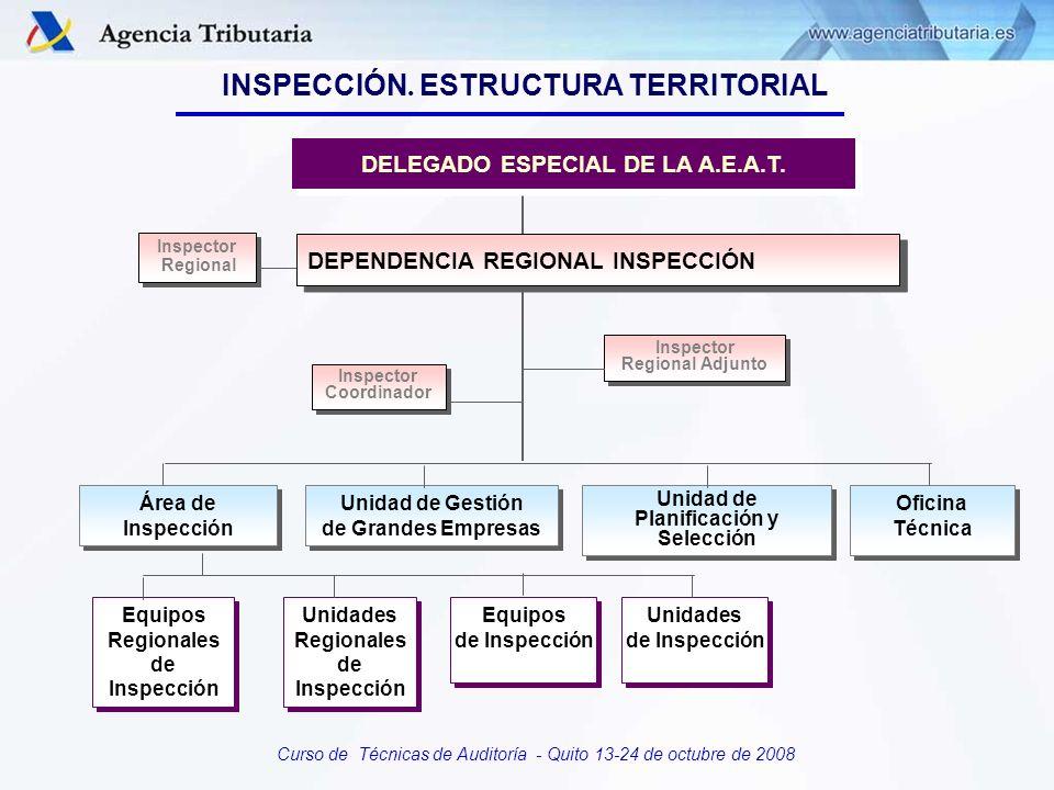 DELEGADO ESPECIAL DE LA A.E.A.T. Planificación y Selección