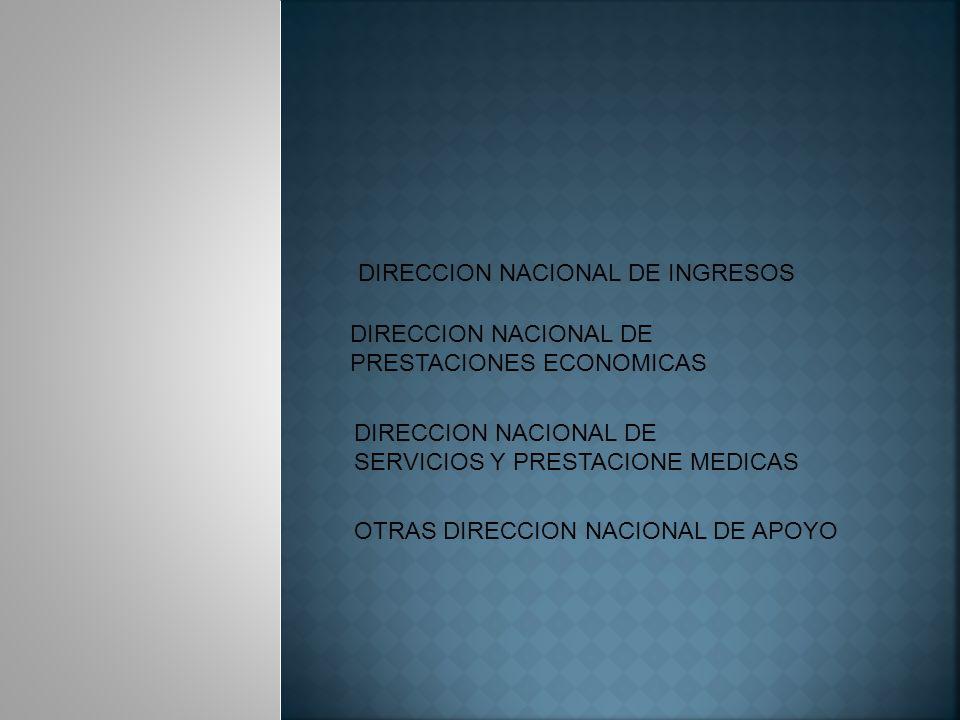 DIRECCION NACIONAL DE INGRESOS