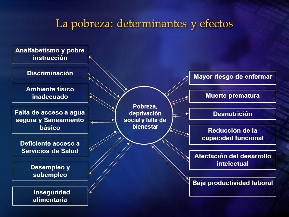 La pobreza: determinantes y efectos