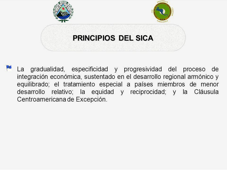 PRINCIPIOS DEL SICA
