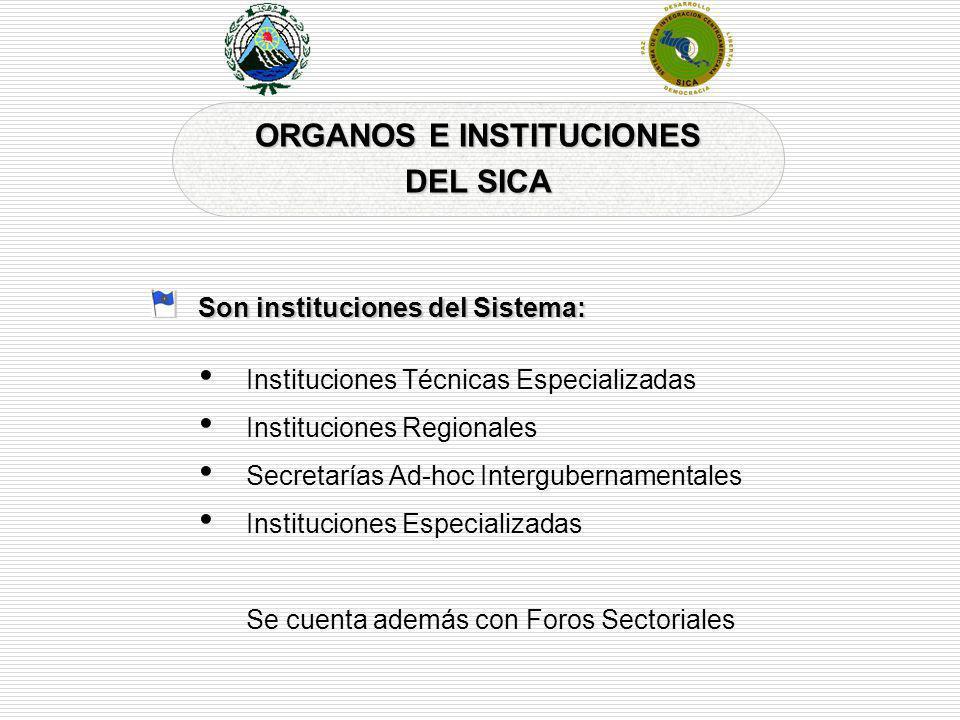 ORGANOS E INSTITUCIONES