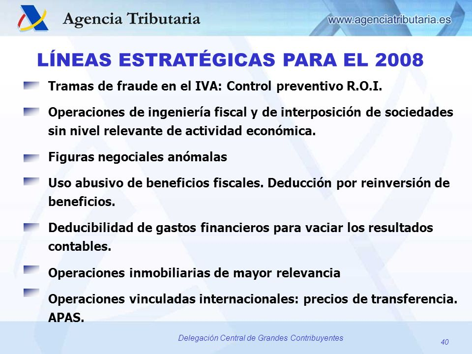 LÍNEAS ESTRATÉGICAS PARA EL 2008