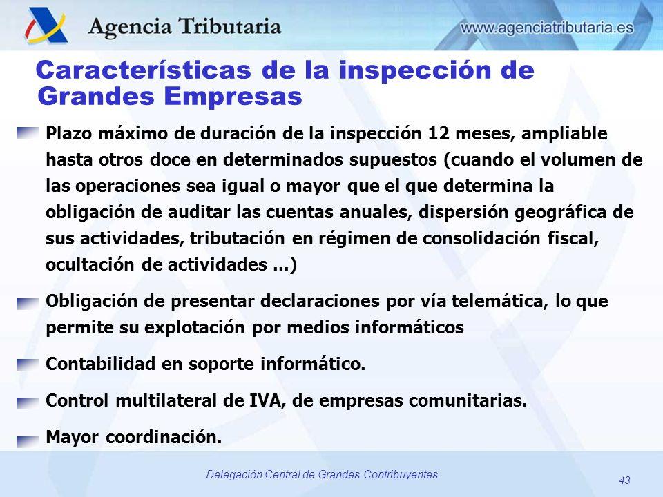 Características de la inspección de Grandes Empresas