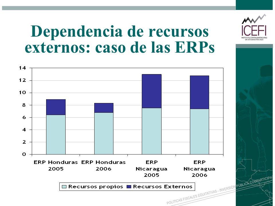 Dependencia de recursos externos: caso de las ERPs