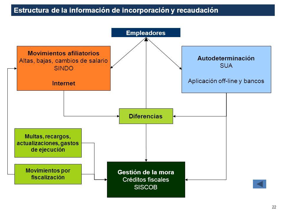 Estructura de la información de incorporación y recaudación
