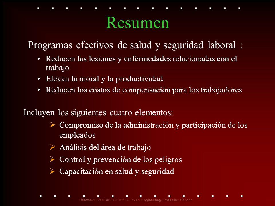 Programas efectivos de salud y seguridad laboral :