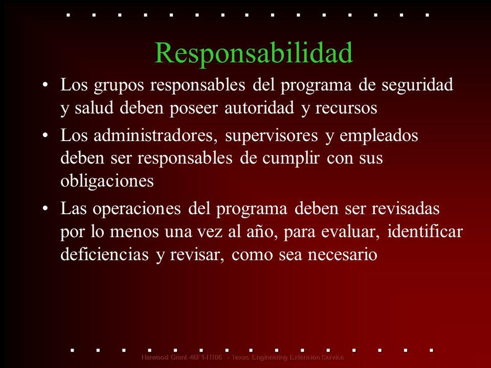Responsabilidad Los grupos responsables del programa de seguridad y salud deben poseer autoridad y recursos.