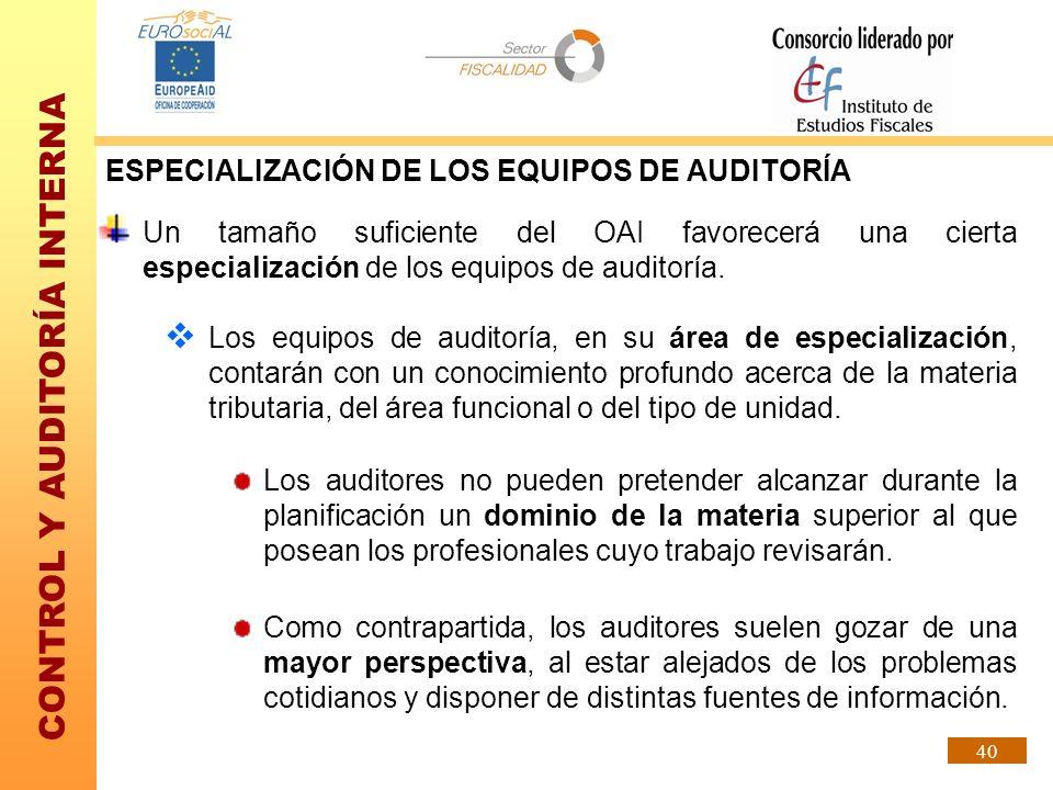 ESPECIALIZACIÓN DE LOS EQUIPOS DE AUDITORÍA