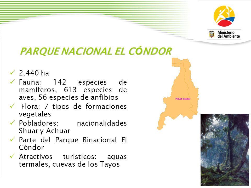 PARQUE NACIONAL EL CÓNDOR